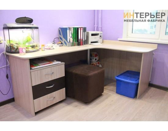 Купить Детская мебель на заказ. dmz-100204 в Томске