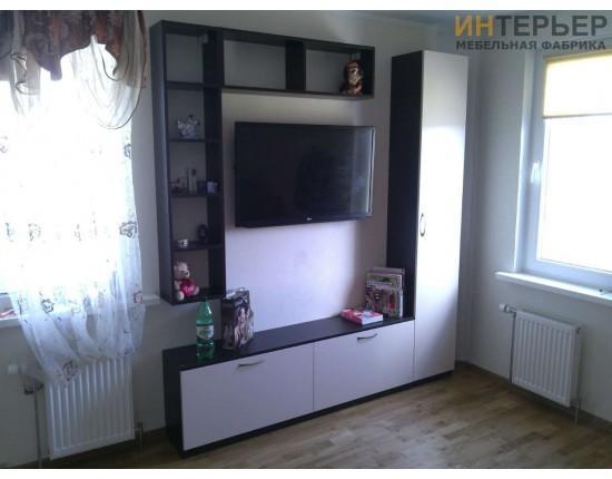 Купить Гостиная на заказ 1600 мм. gnz-100338 в Томске