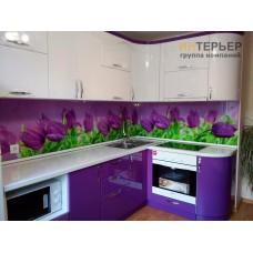 Кухня угловая МДФ глянец на заказ 1700*2700 мм. knzak-100007